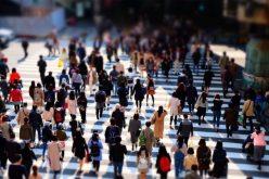 3.891 persoane, încadrate în muncă în primele nouă luni prin intermediul AJOFM