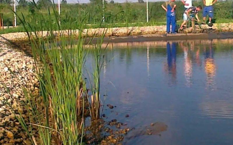 O firmă sibiană vrea să amenajeze un iaz piscicol lângă râul Mureş, între Teiuş şi Beldiu