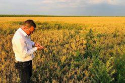 Ministrul Agriculturii: 850 mil. lei pentru fermierii afectaţi de secetă. Sunt 1,2 mil. ha calamitate