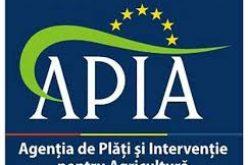 APIA a demarat plata avansului către fermieri